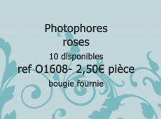 photophores-roses